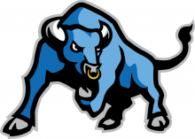 Blue Chip Baseball Bulls